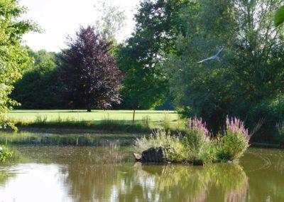 Leicht hügeliges Gelände mit Wasserhindernissen